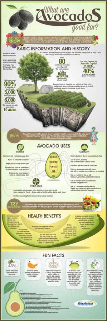 avocado-uses-health-benefits